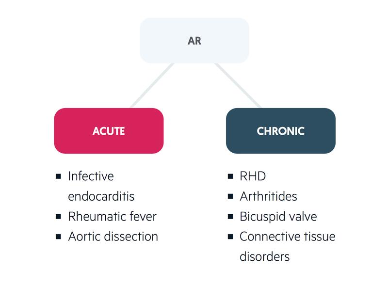 Acute & chronic AR