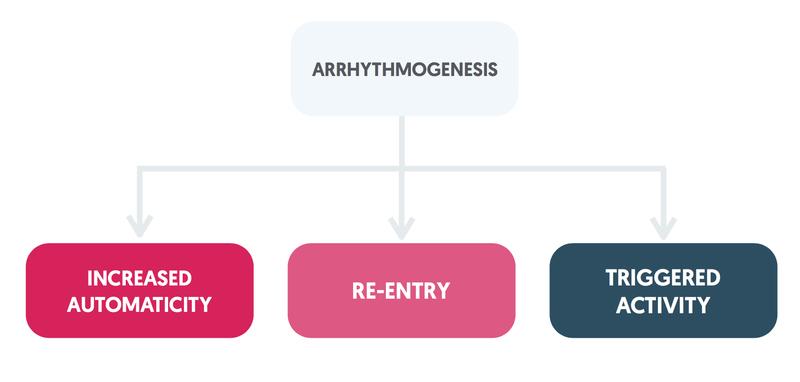 Arrhythmogenesis