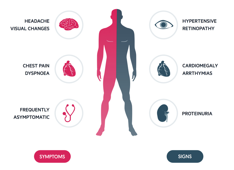 HTN clinical features