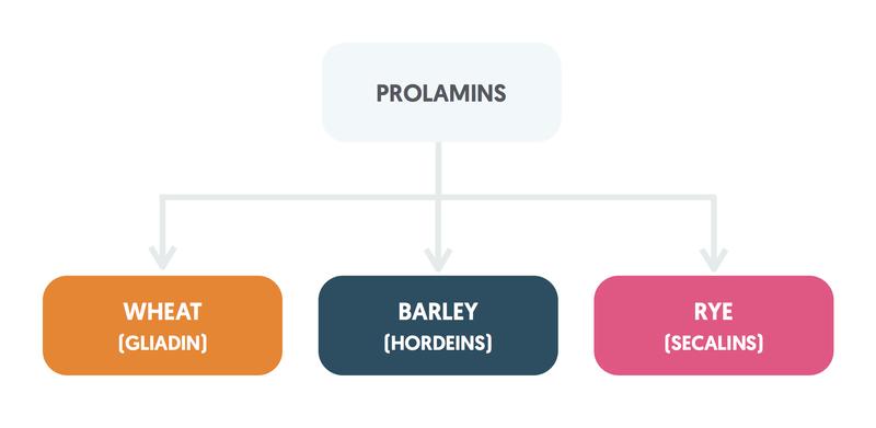 Prolamins
