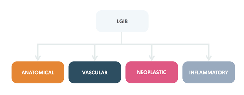 Causes of LGIB