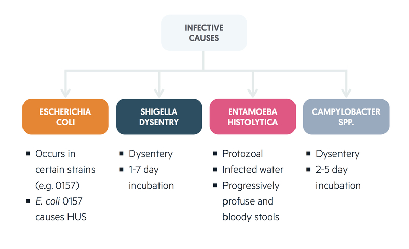 Infective causes of LGIB