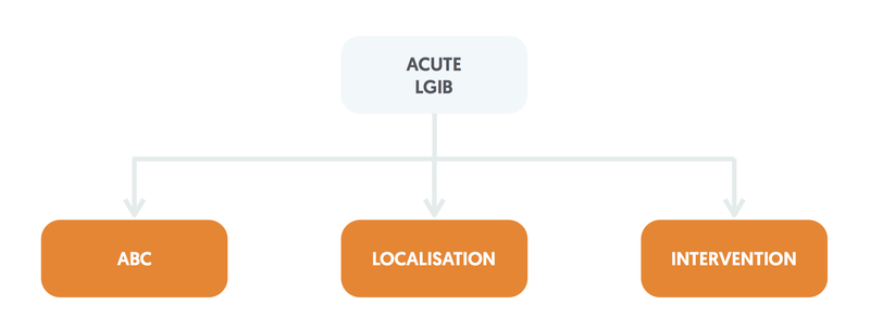 Management of acute LGIB
