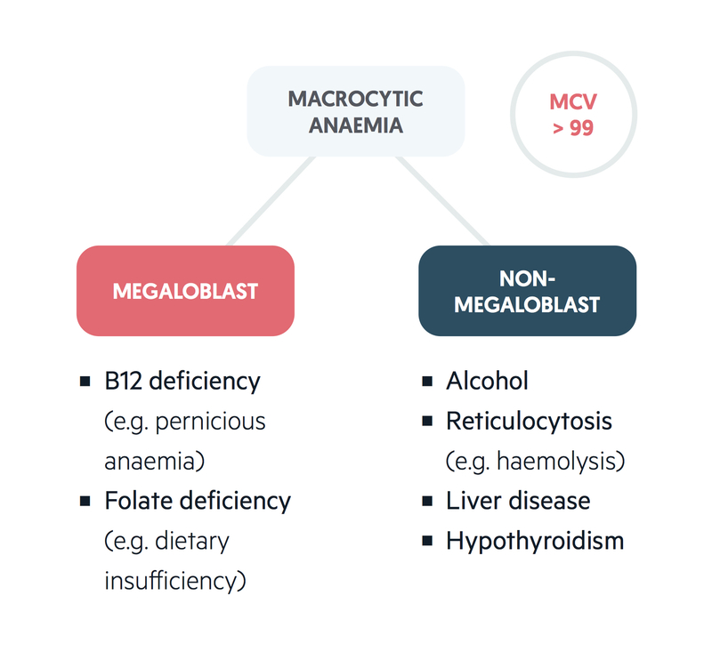 Common causes of macrocytic anaemias