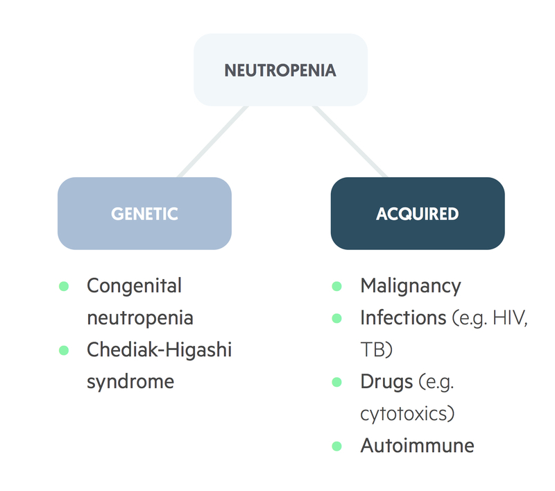 Causes of neutropenia