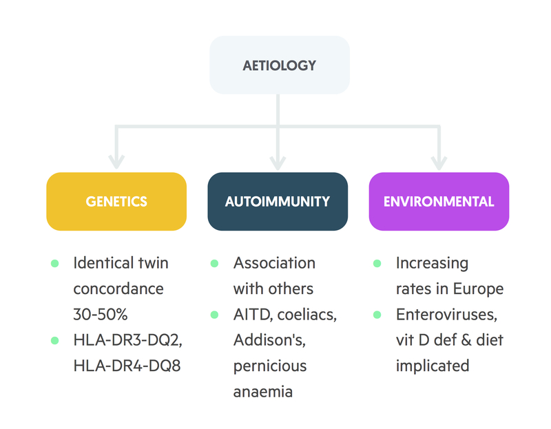 Aetiology of T1DM