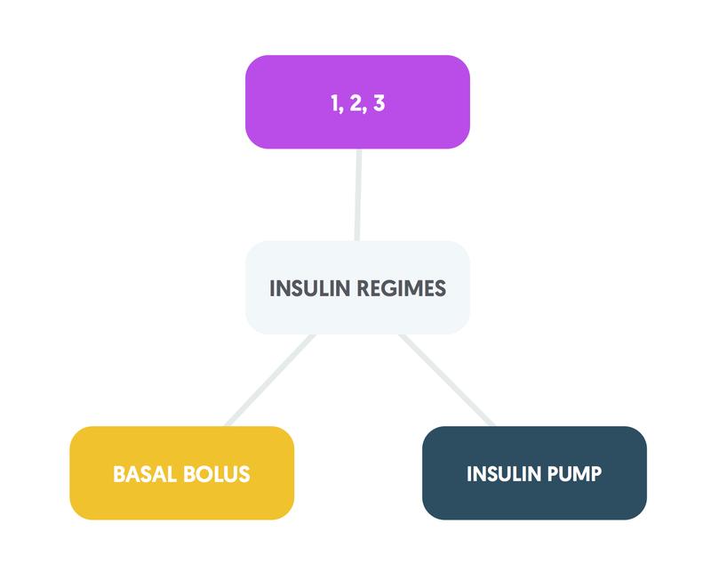 T1DM insulin regimes