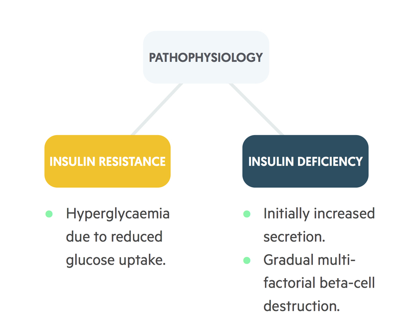 T2DM Pathophysiology