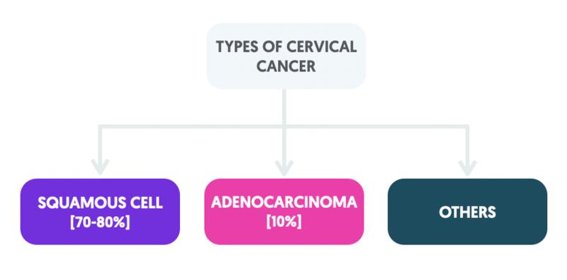 Types of cervical cancer