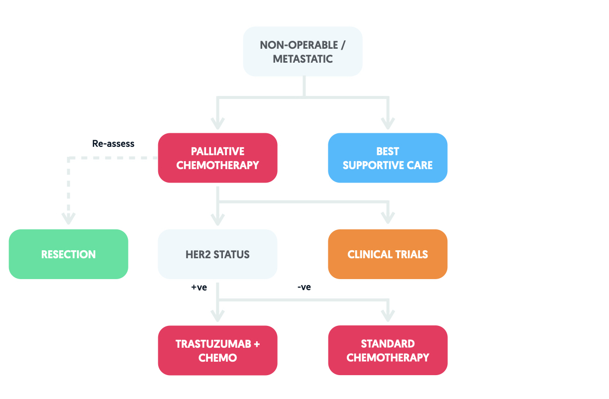 Treatment algorithm based on the European Society of Medical Oncology (ESMO) for gastric cancer (non-operable)