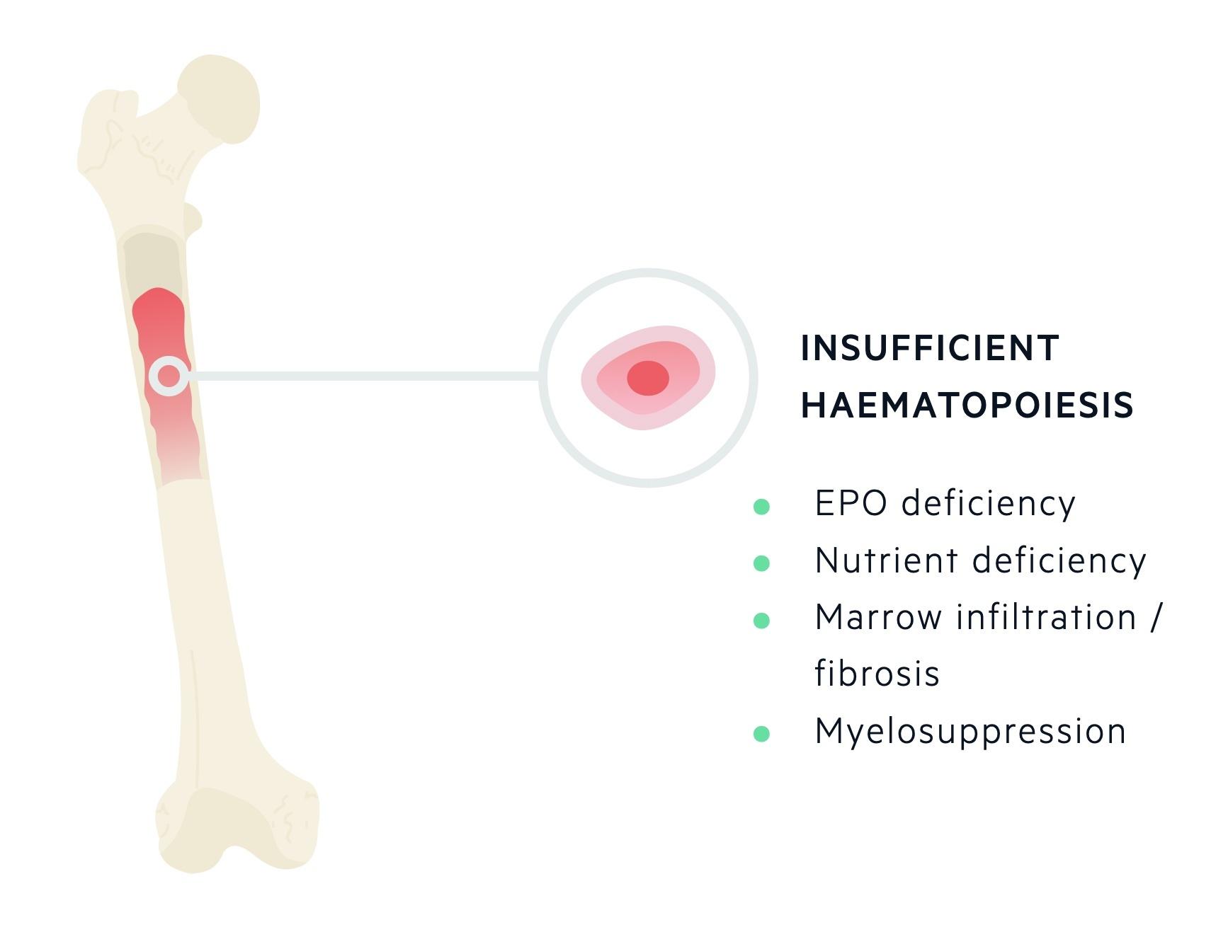 Insufficient haematopoiesis