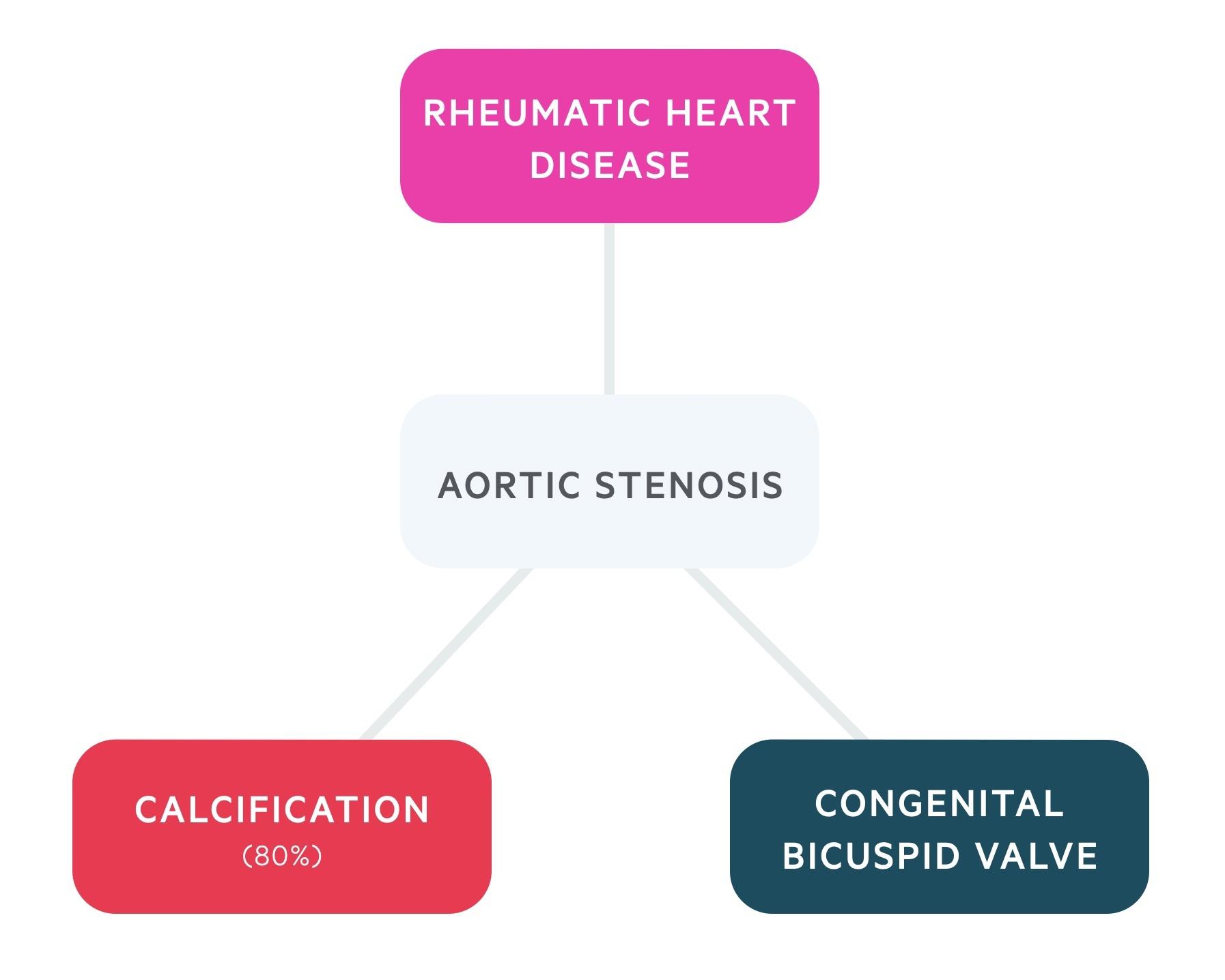 Aetiology of aortic stenosis