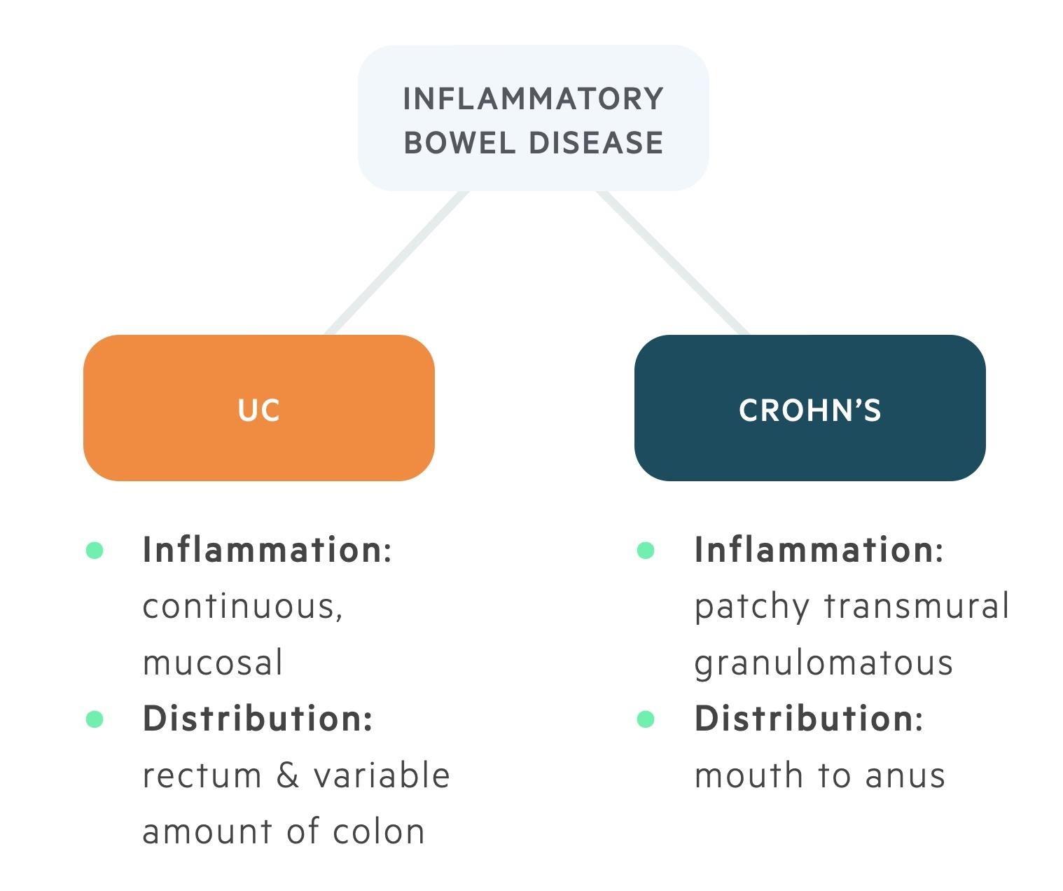 Types of inflammatory bowel disease