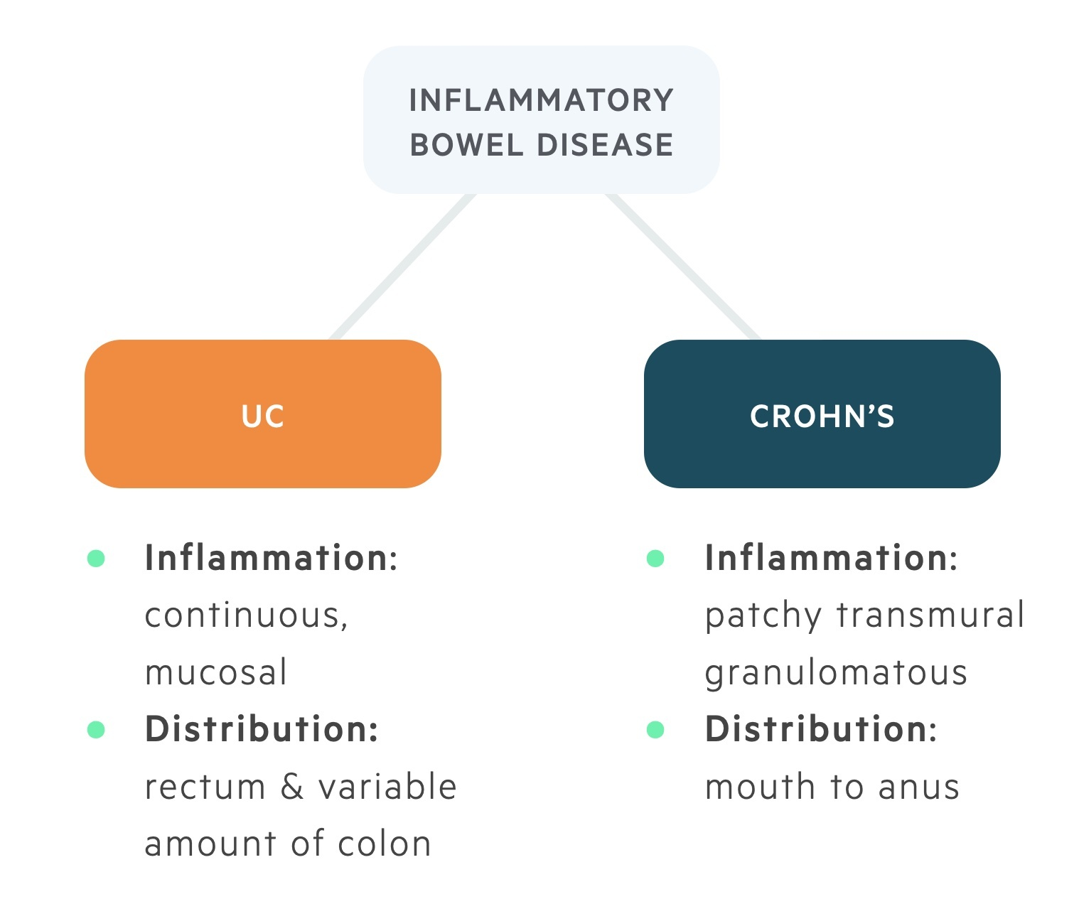 Types of inflammatory bowel disease (IBD)