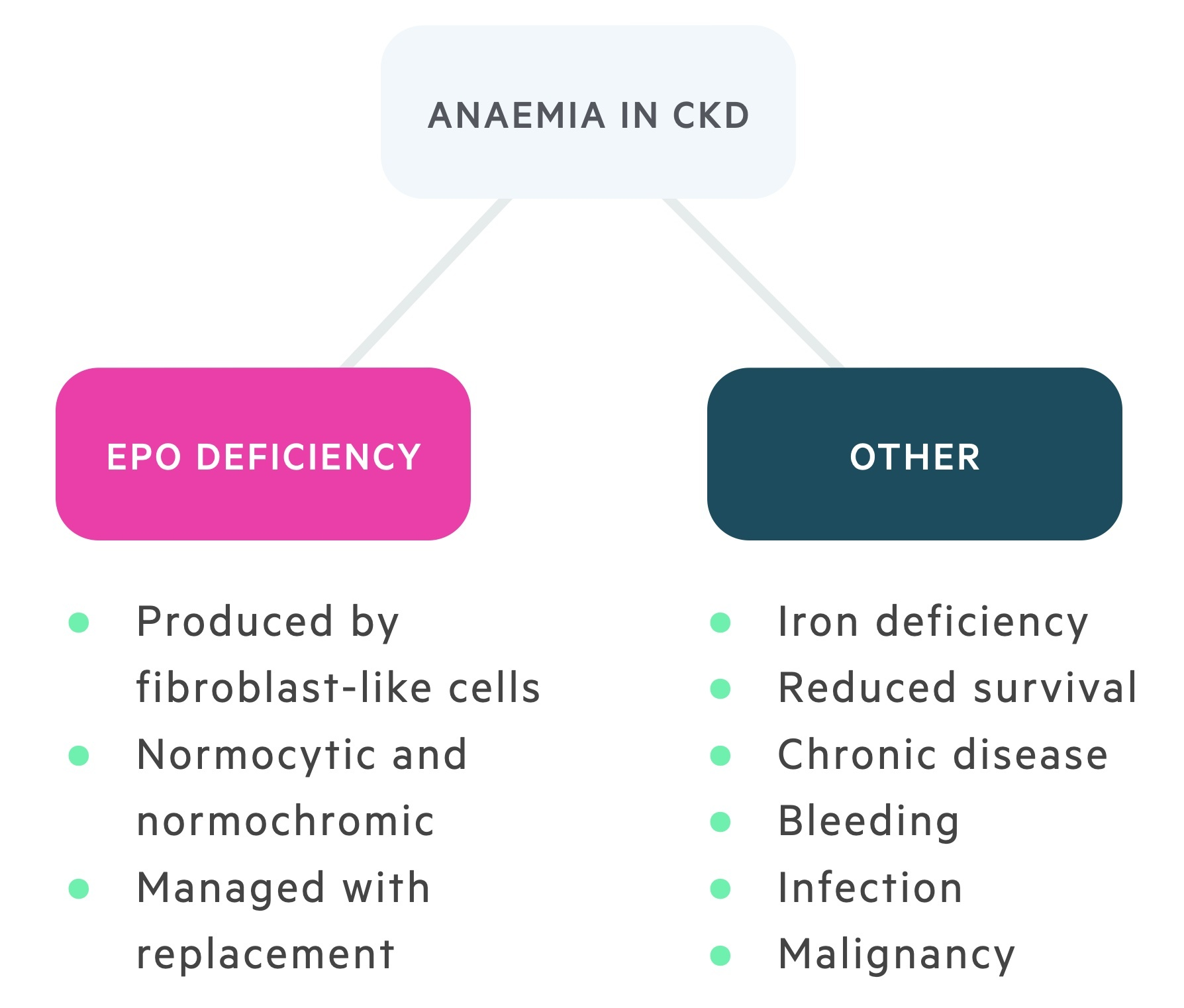 Aetiology of anaemia in chronic kidney disease (CKD)