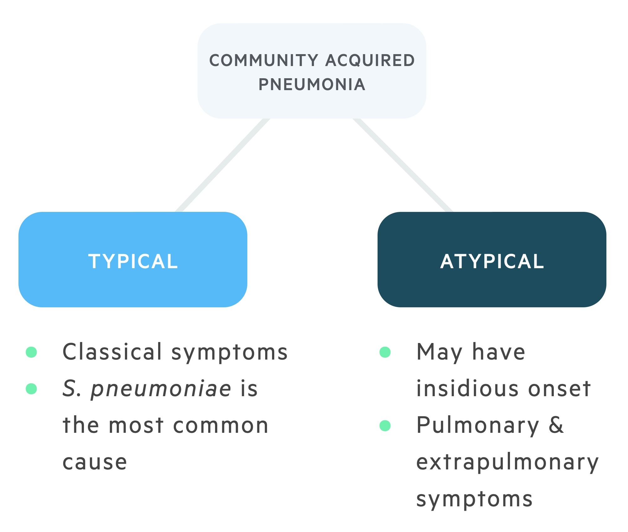 Community acquired pneumonia typical vs atypical