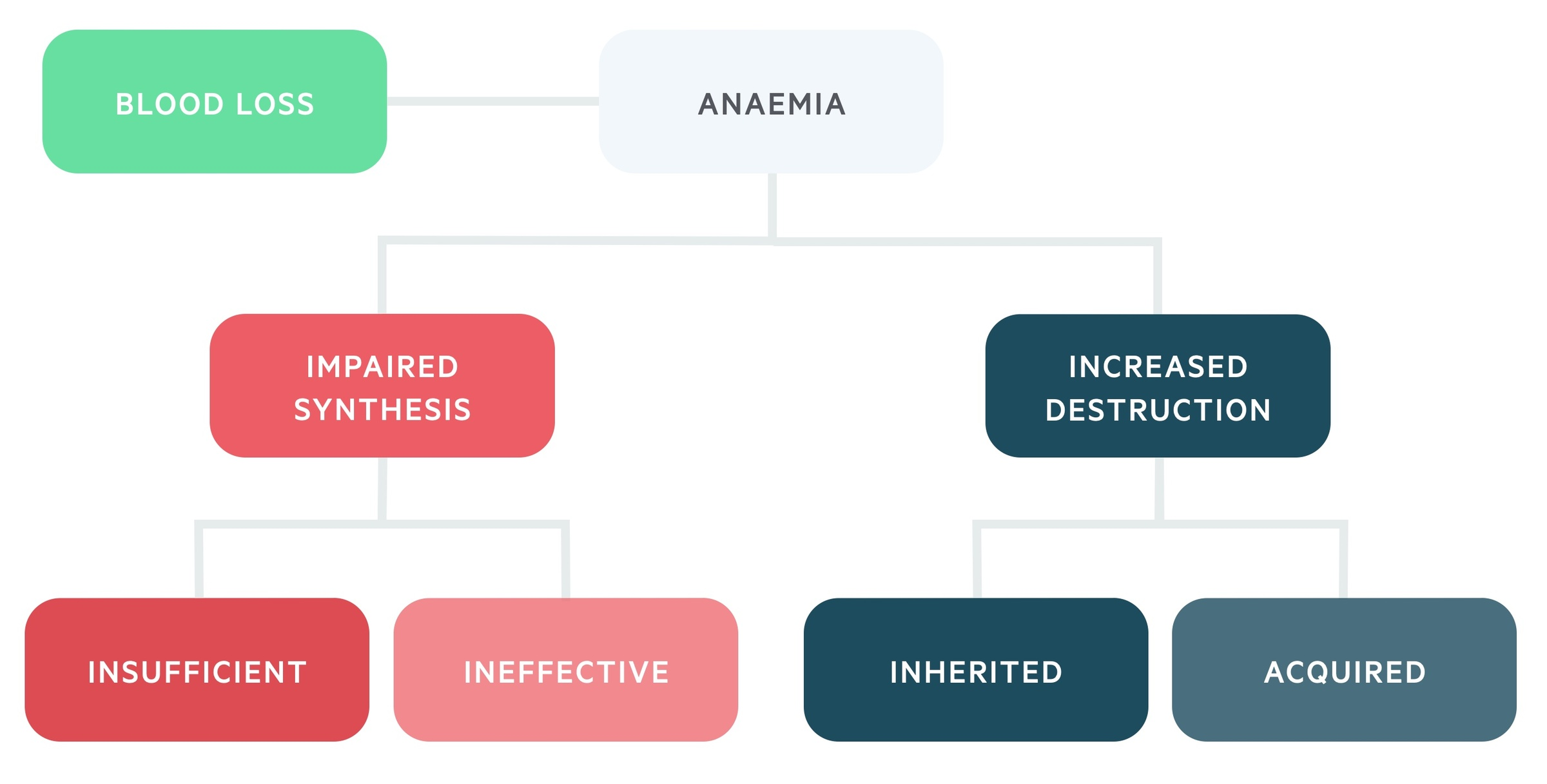 Aetiological causes of anaemia