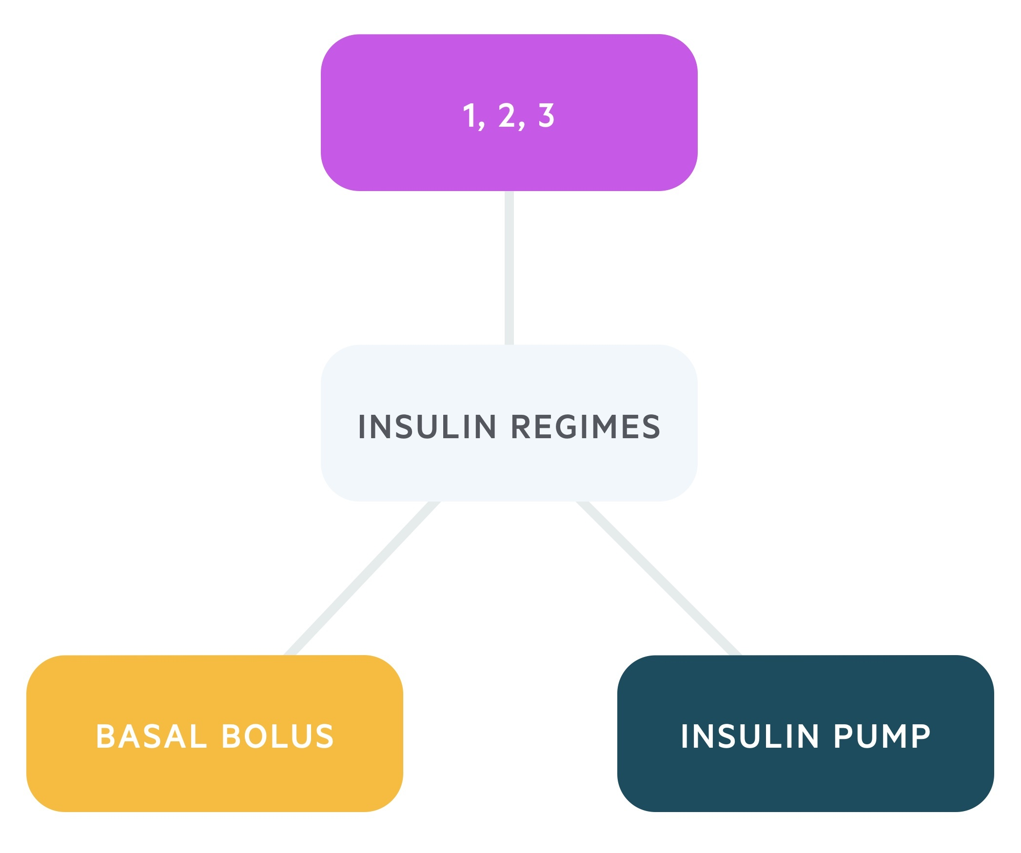 Insulin regimens in T1DM
