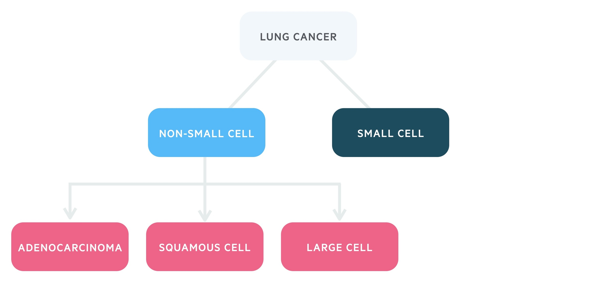 Types of lung cancer (small cell vs non small cell)