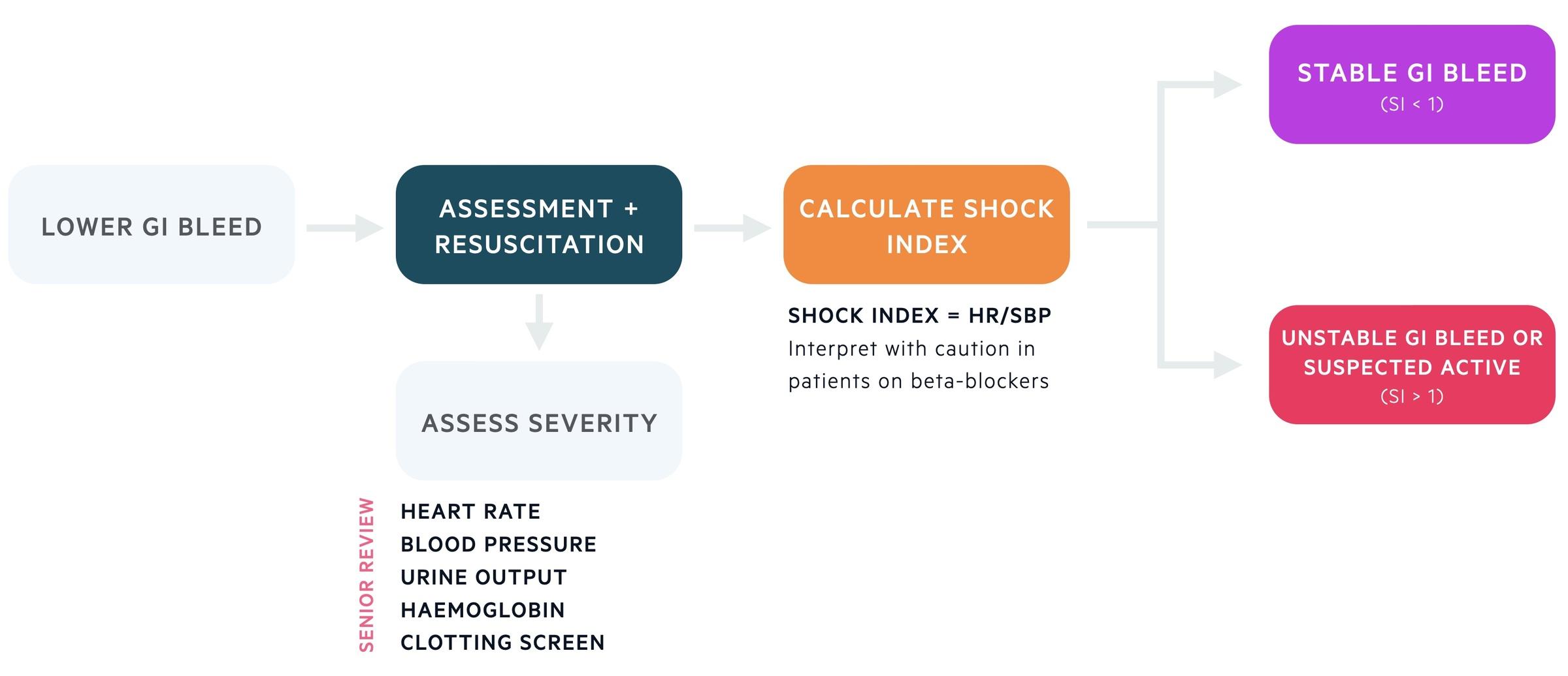 Initial assessment of lower GI bleed