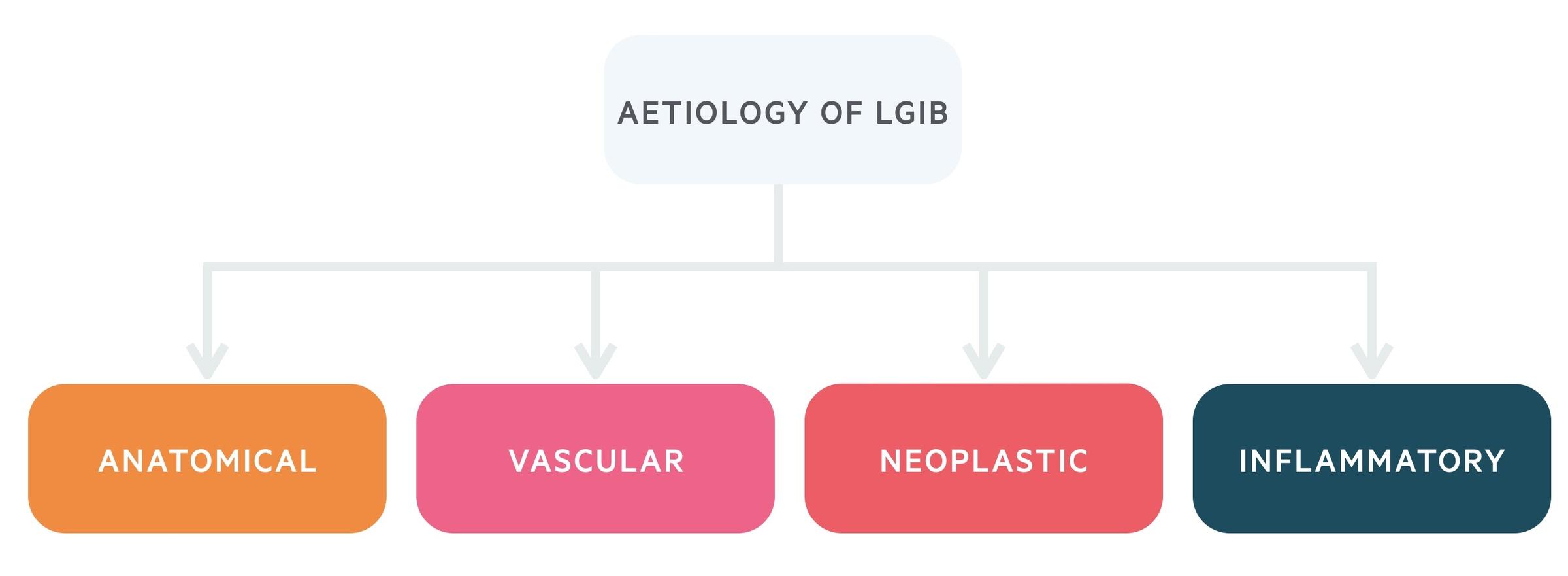Aetiology of lower GI bleed (LGIB)
