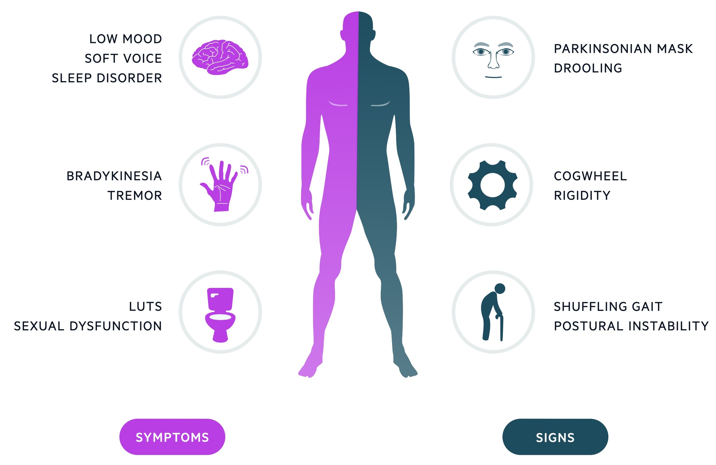 Clinical features of parkinsons disease