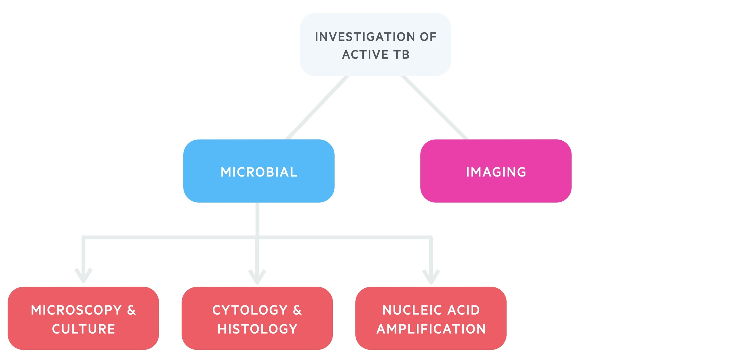 Investigation of active tuberculosis (TB)