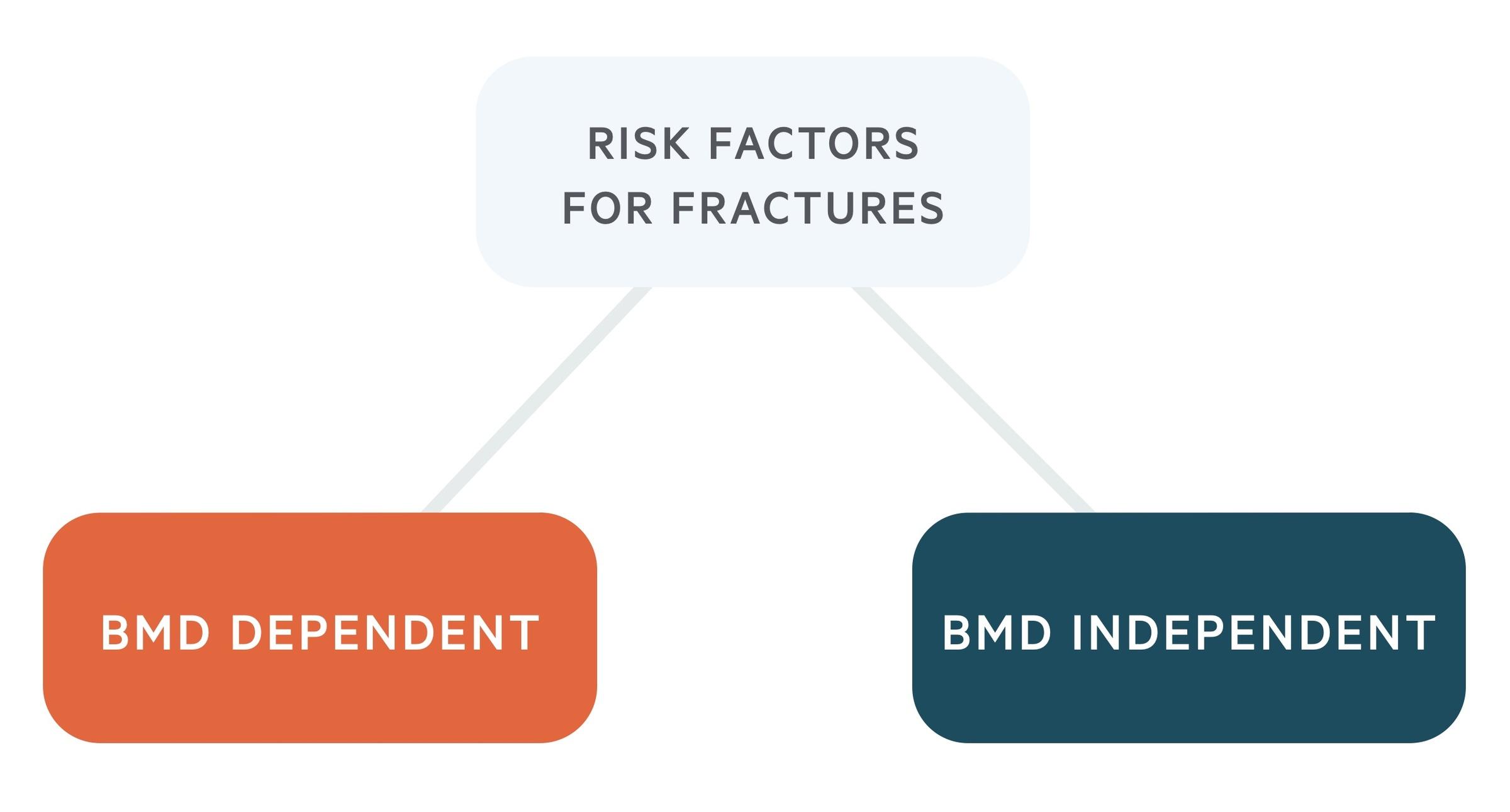 Fracture risk factors