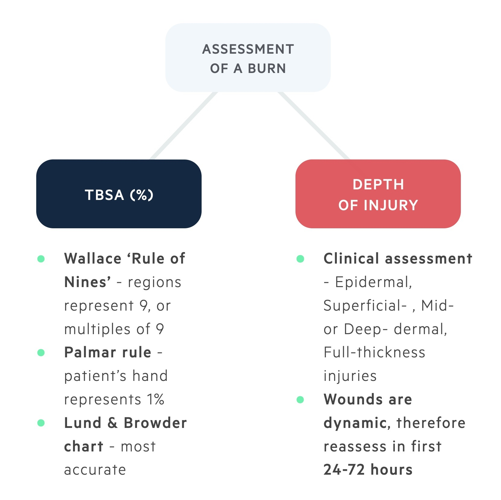 Assessment of a burn injury