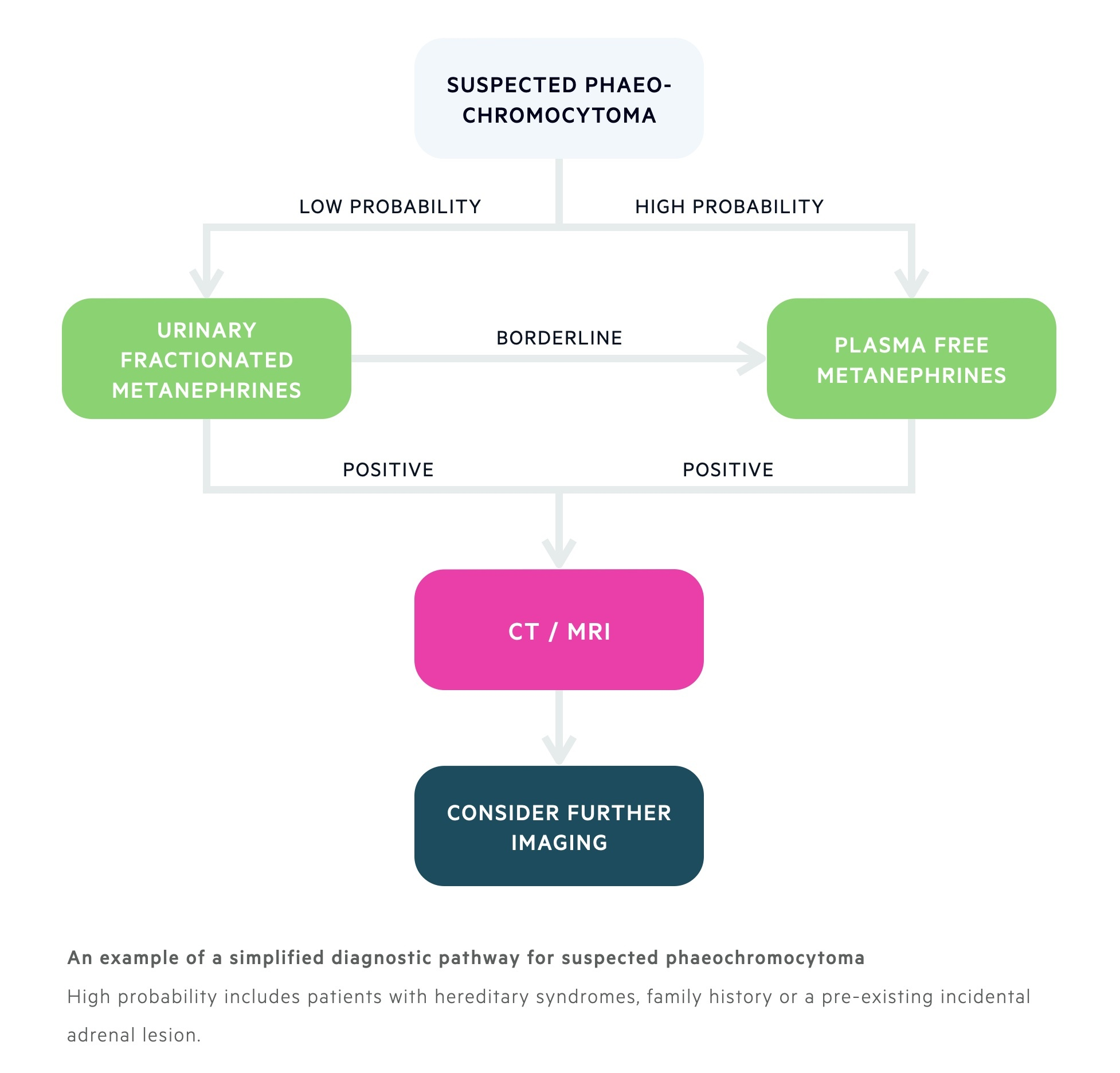 An example of a simplified diagnostic pathway for suspected phaeochromocytoma