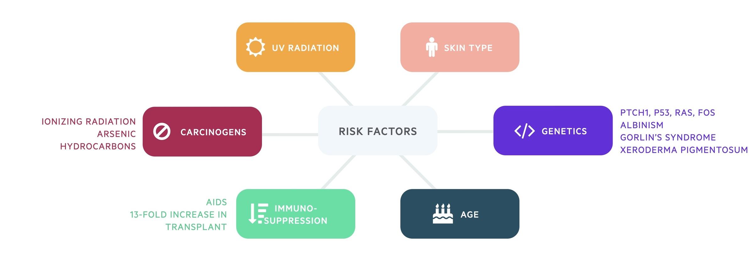 Risk factors for BCC