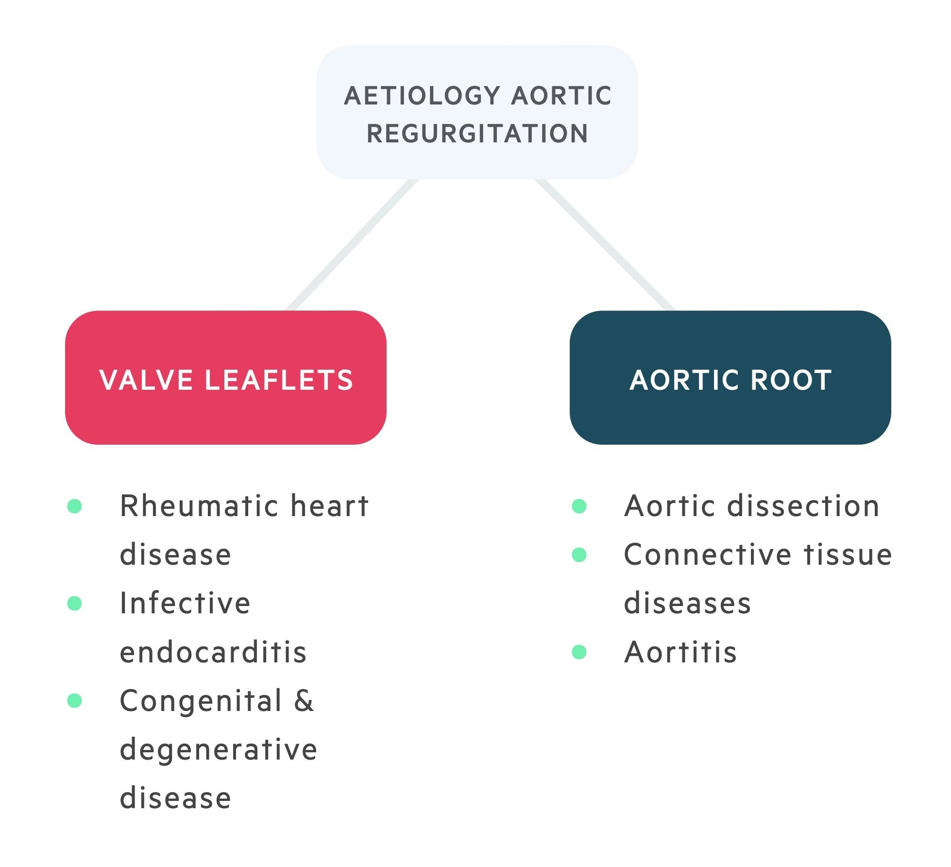 Aetiology of aortic regurgitation (AR)