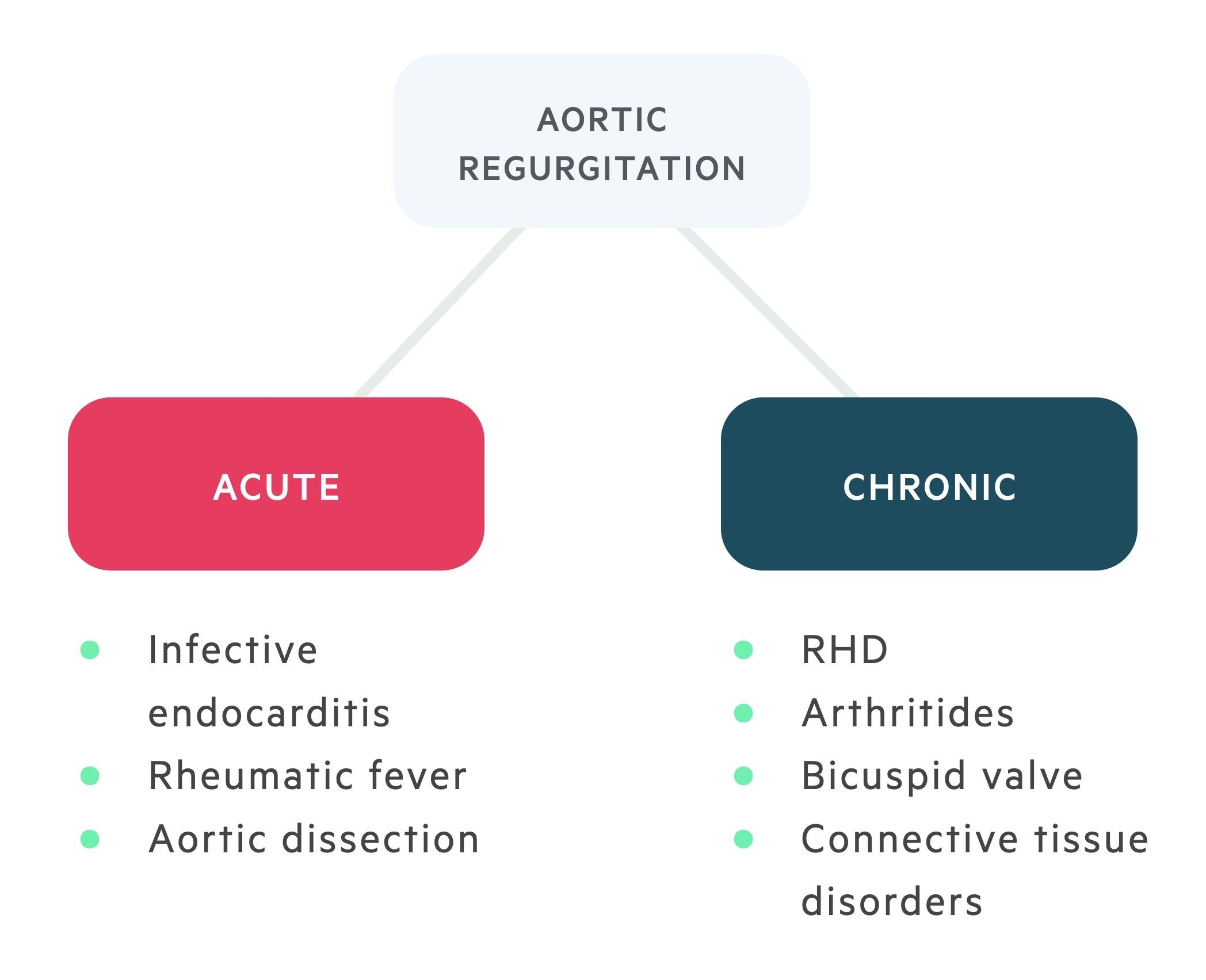 Acute & chronic aortic regurgitation (AR)