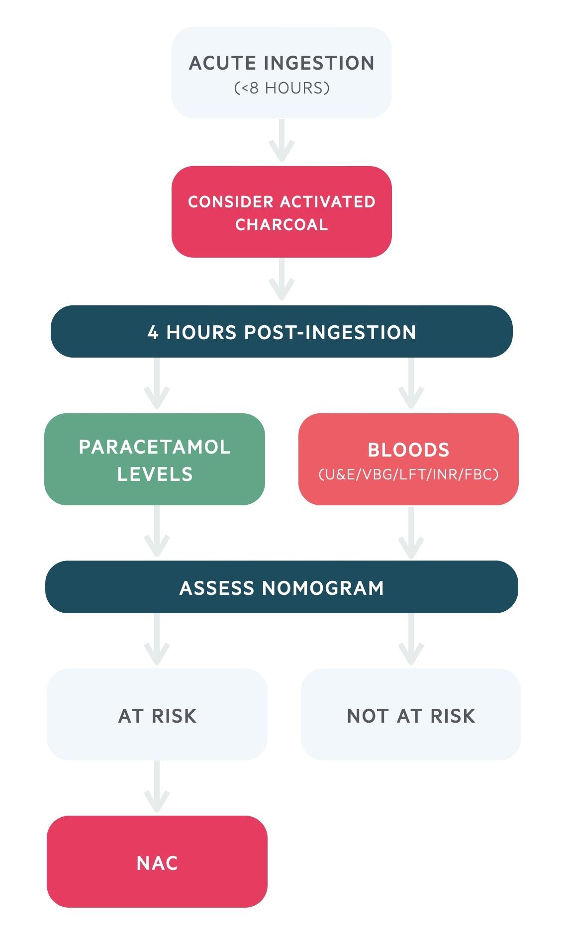 Acute ingestion (< 8 hours) paracetamol overdose management