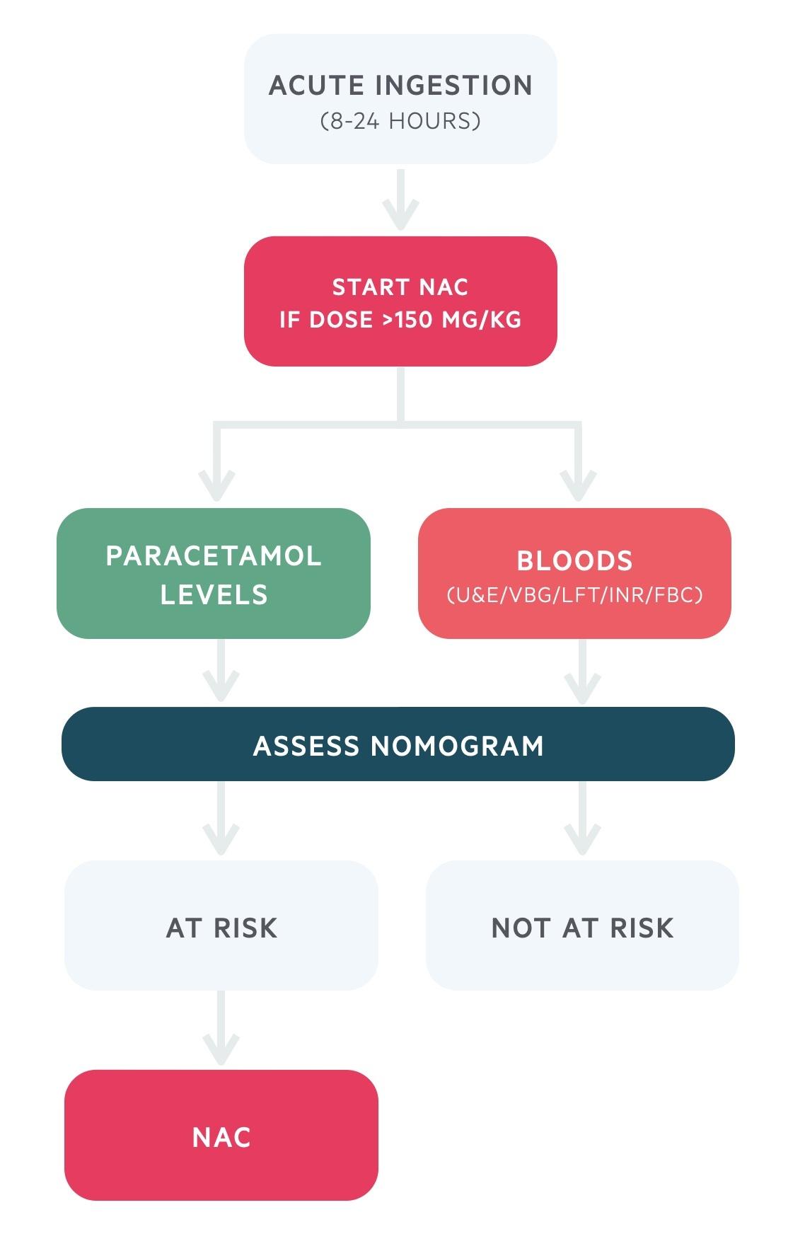 Acute ingestion (8-24 hours) paracetamol overdose management