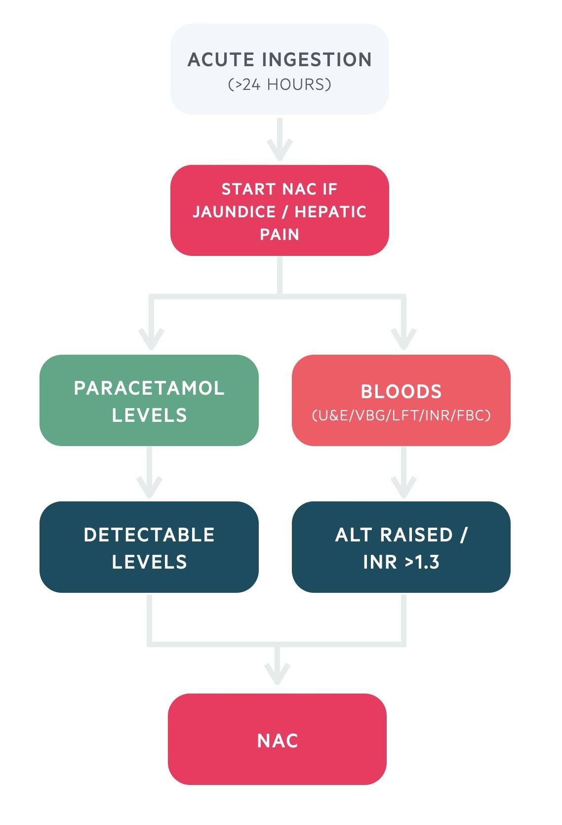 Acute ingestion (>24 hours) paracetamol overdose management