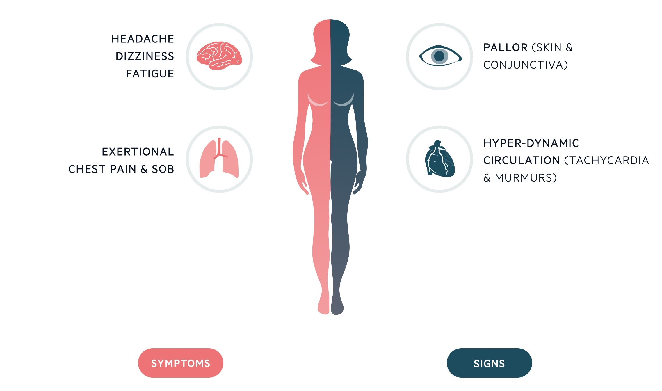 Clinical features of IDA