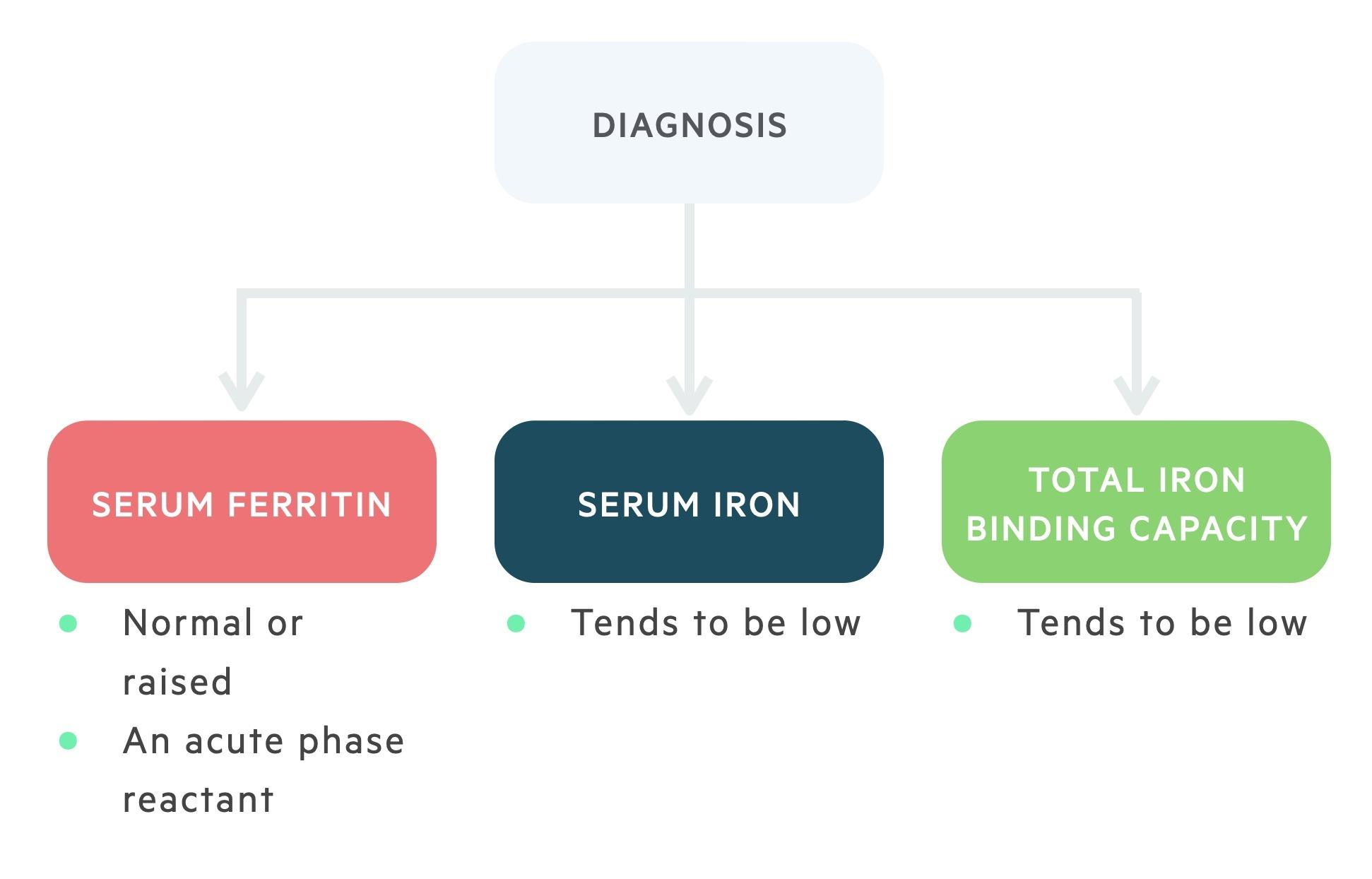 Diagnosis of anaemia of chronic disease