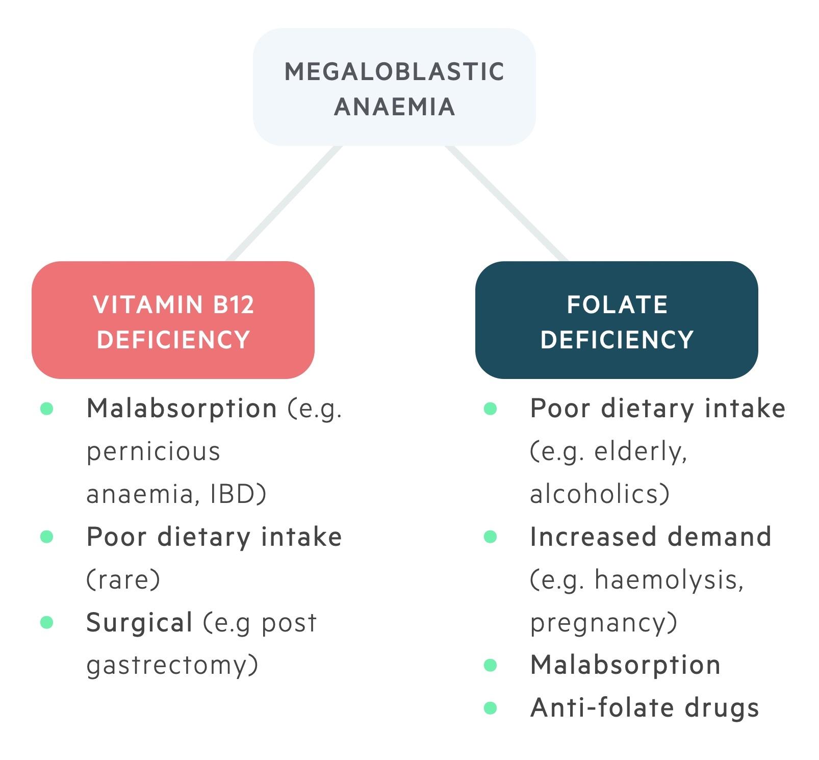 Aetiology of megaloblastic anaemias
