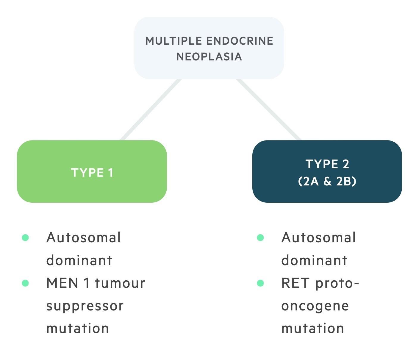 Types of multiple endocrine neoplasia