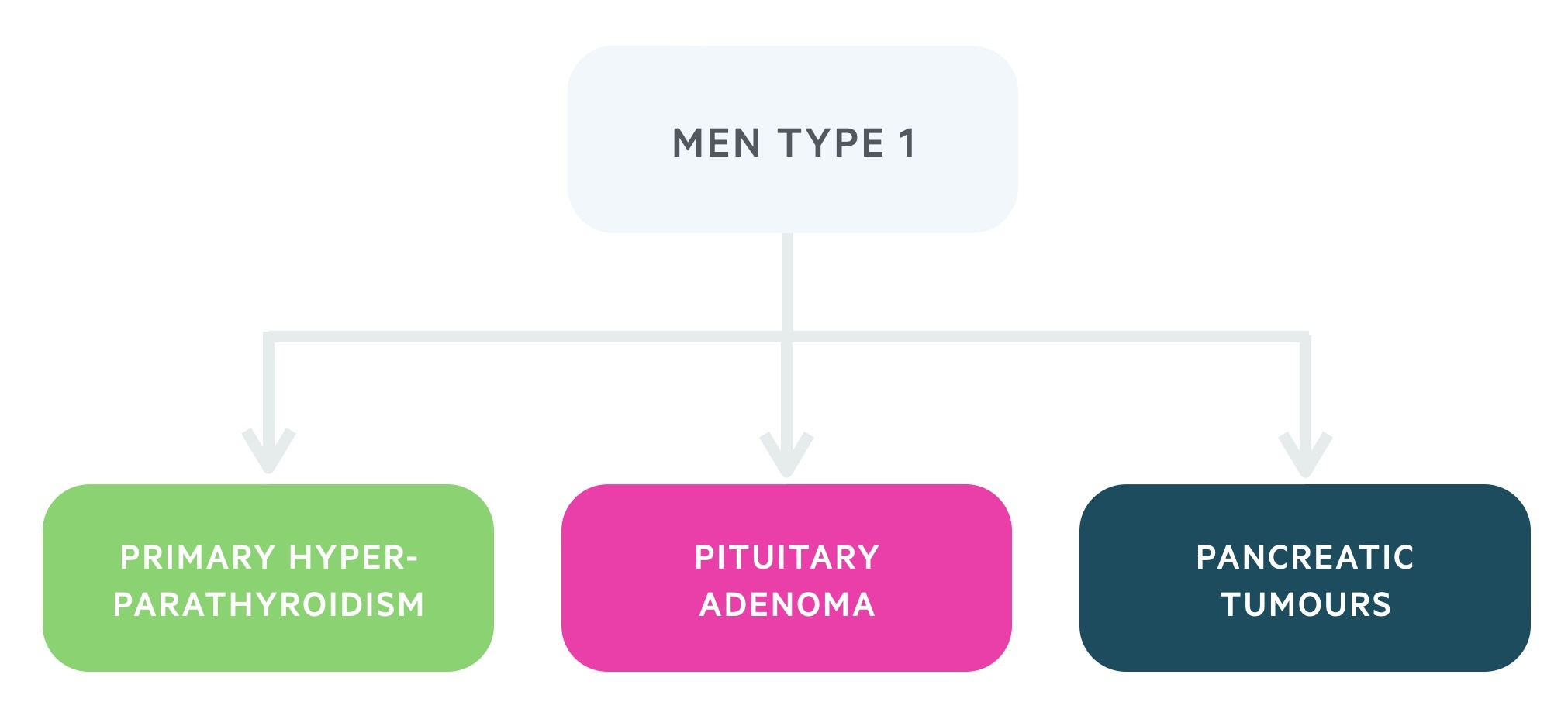 Manifestations of MEN type 1