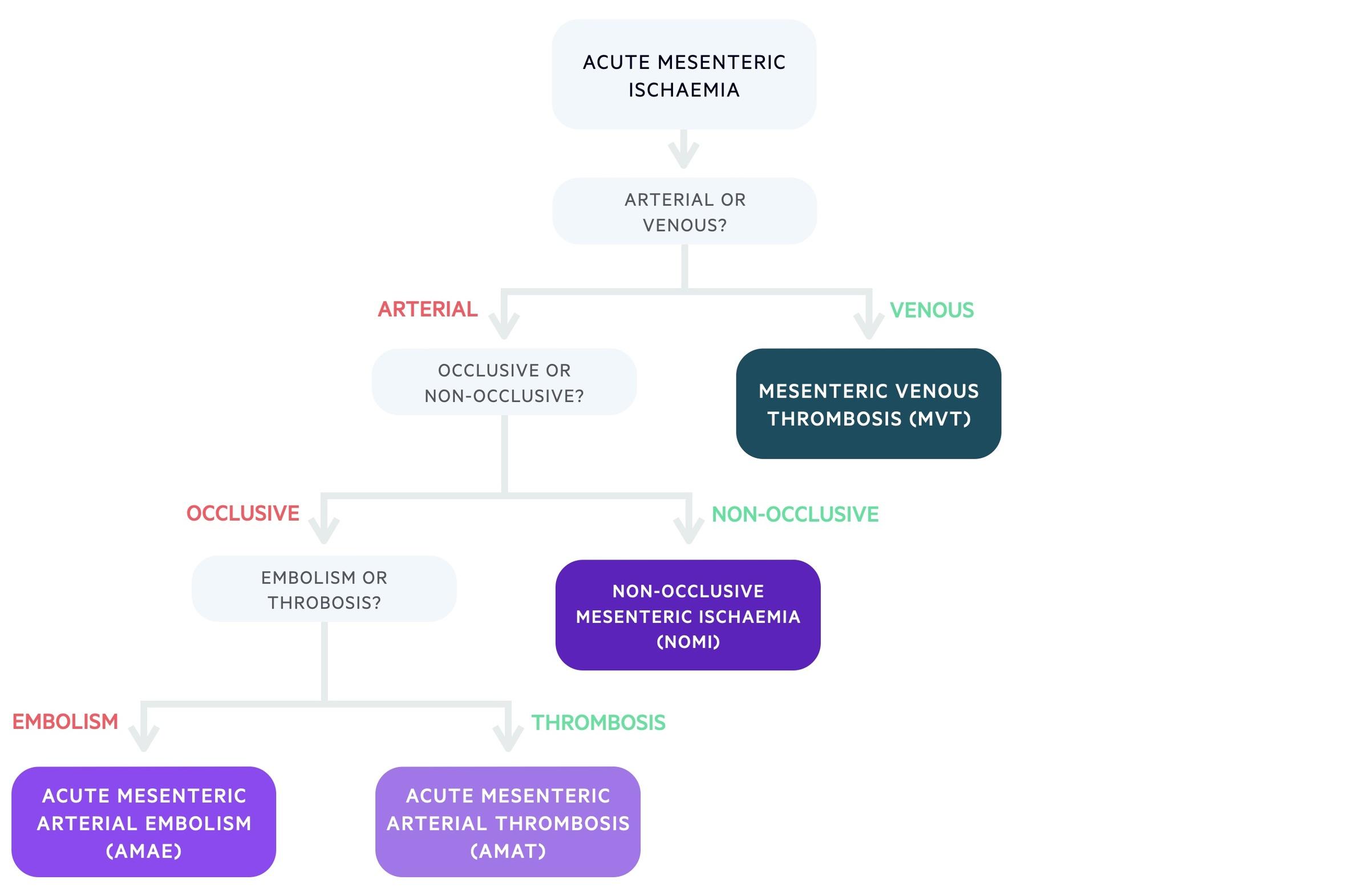 Subtypes of acute mesenteric ischaemia